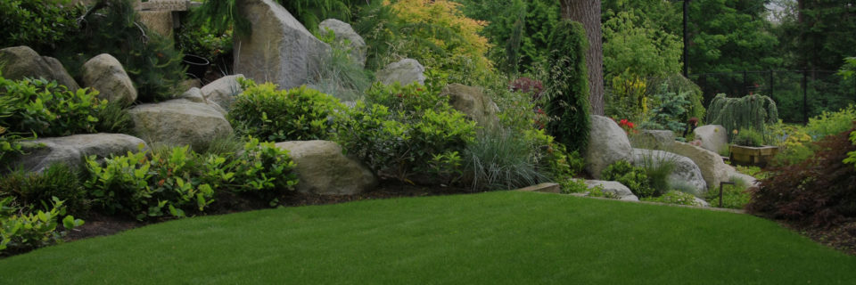 Get landscaping you'll love