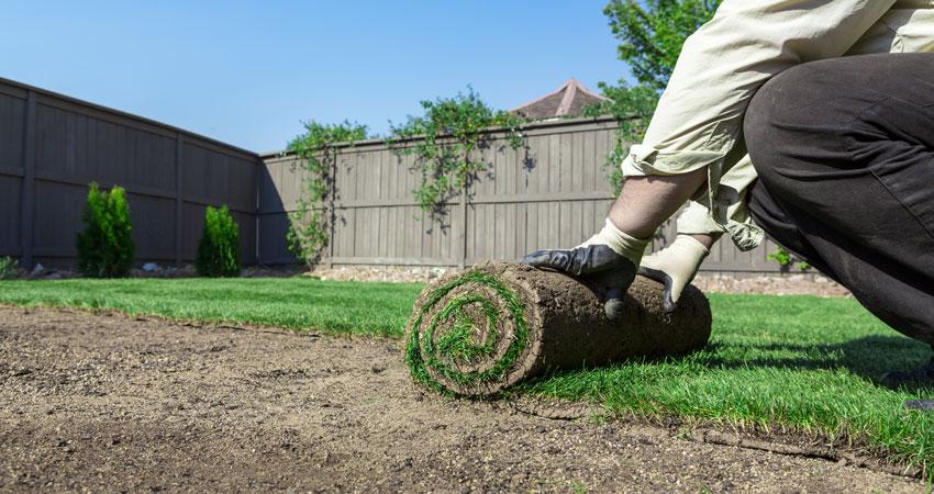Man installing Lawn