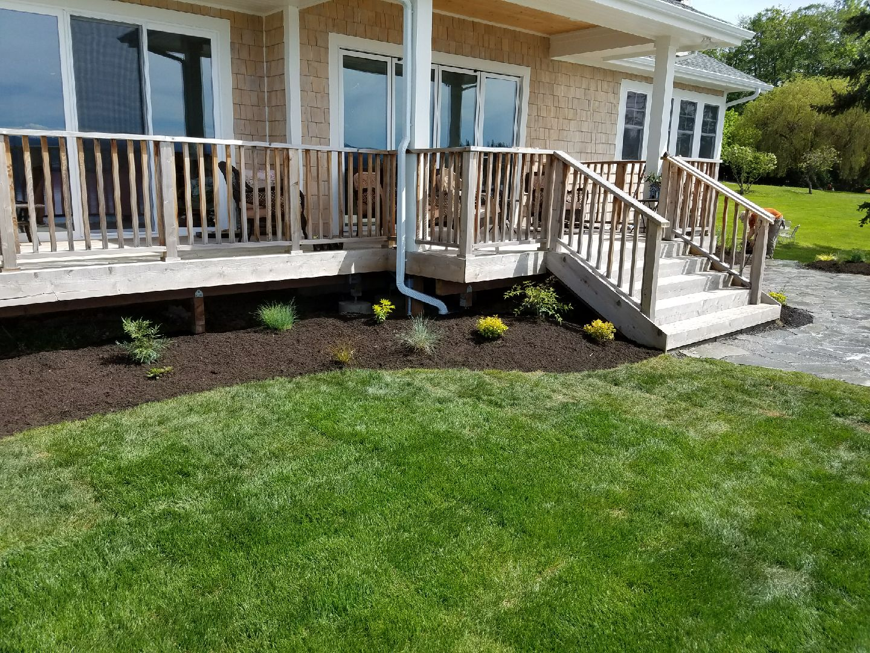 Porch Garden with New Grass